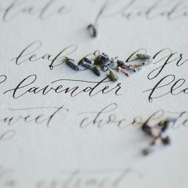 Calligraphy in winter